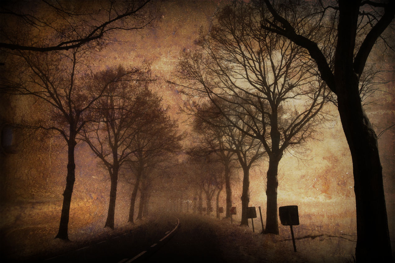 Mysterious road